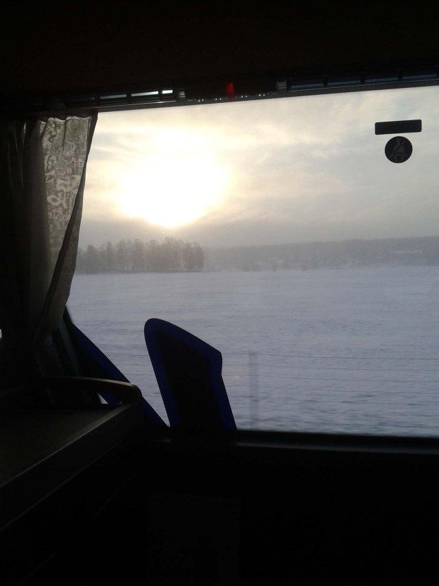 bussutsikt