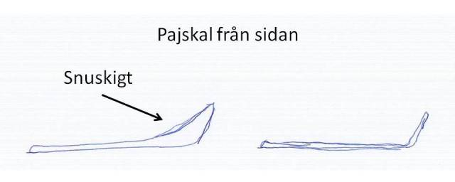 Pajskalet