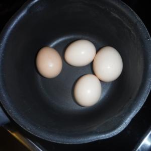 Ägg utan vatten