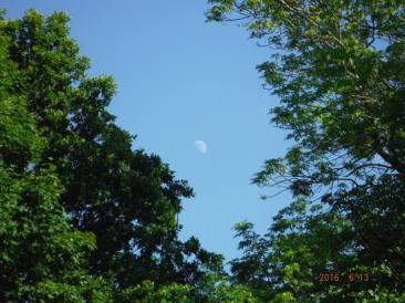 Månen1